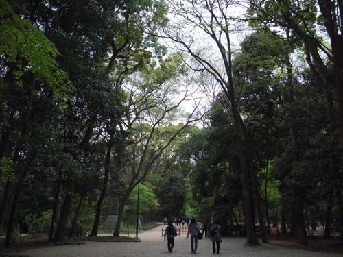 2010_0424京都0002