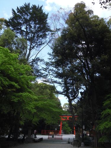 2010_0424京都0003