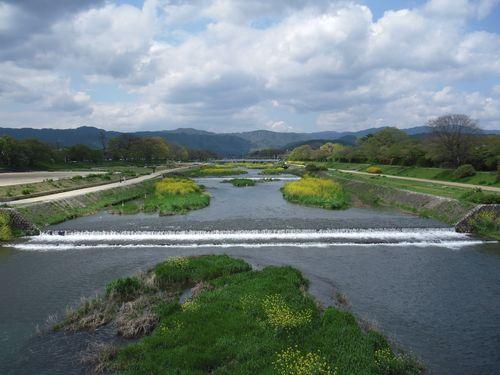 2010_0424京都0004