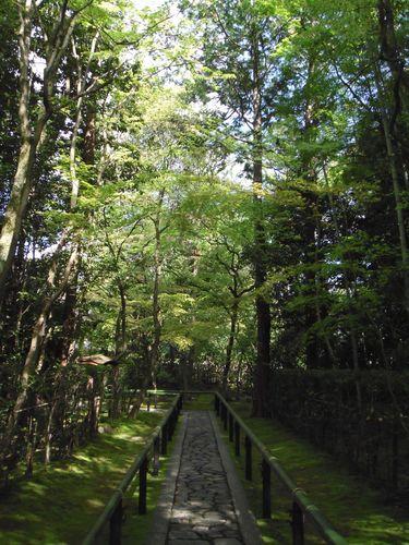 2010_0424京都0009