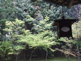 2010_0424京都0011